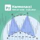 Harmonacci Patterns